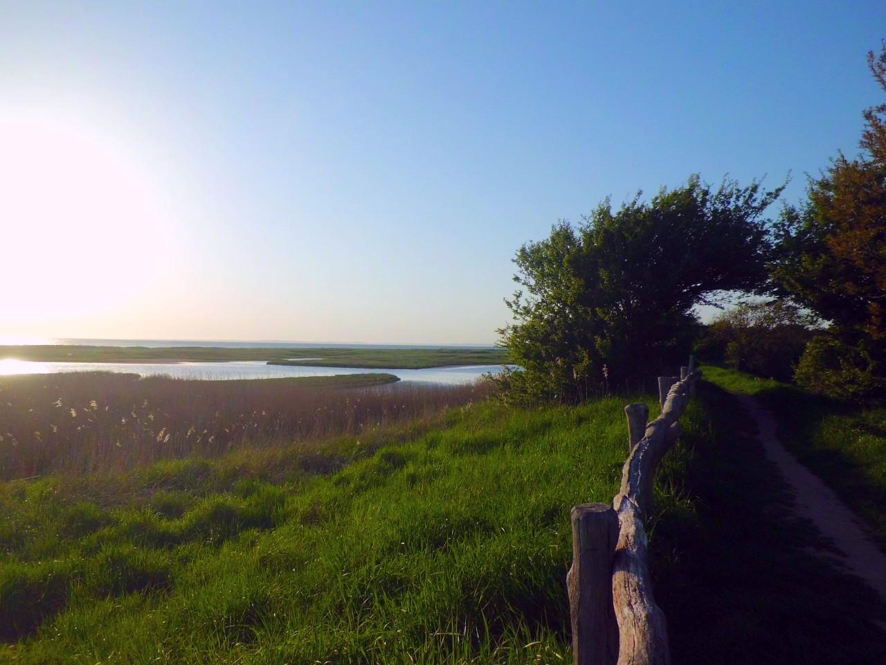 Naturschutzgebiet Geltinger Birk